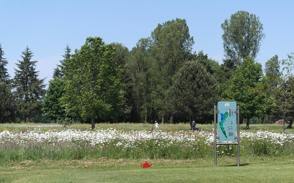 golfplatz-ostfriesland-tee-9