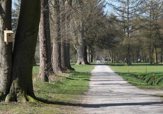 golfplatz-ostfriesland-kurze-wege-1
