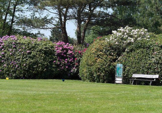golfplatz-ostfriesland-top-pflegezustand-2